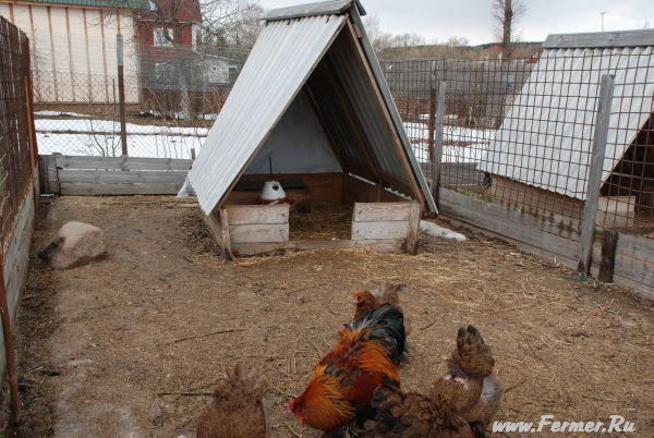 Зимний сарай для кур своими руками 54