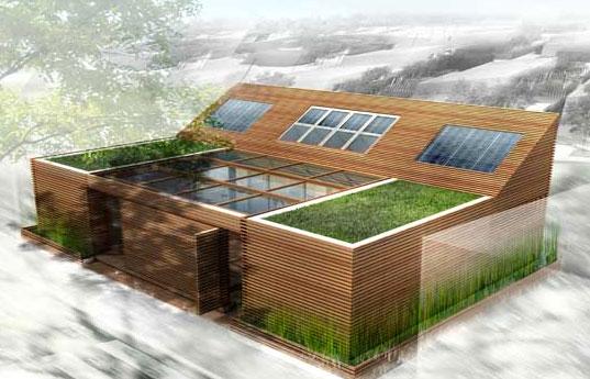 Будущий дом своими руками
